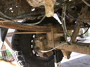 E250SD rear lift.jpg