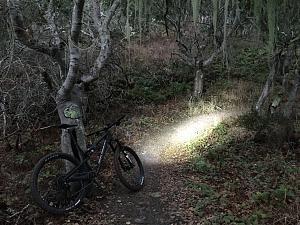 Bike Monterey.jpg
