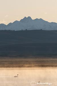 _DSC2265 Sunrise in Centennial Valley, Montana, USA-2.jpg