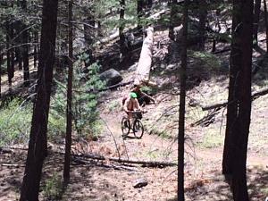 Rionapo_AZ Trail1.JPG