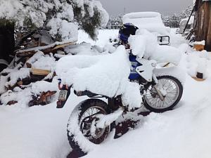 Parks_snow.jpeg