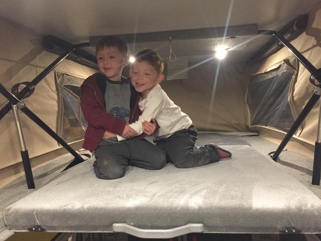 They Like their bunk