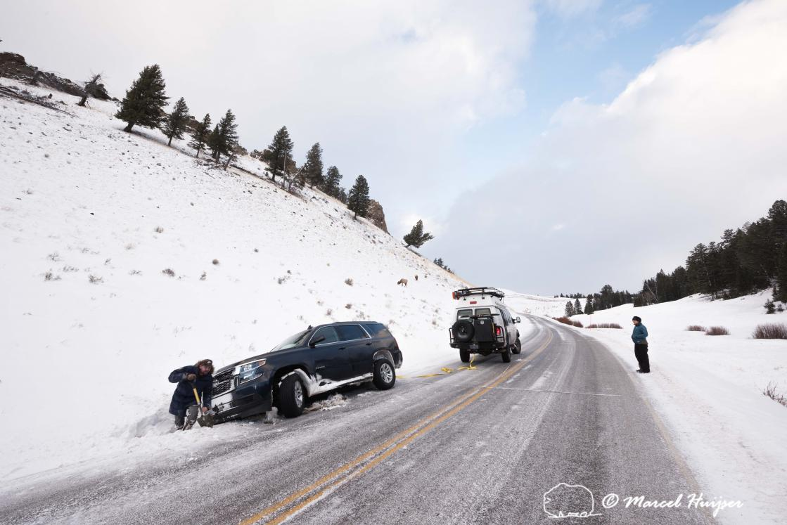 DSC8443 Pulling someone out of the ditch, Yellowstone National Park, Wyoming, USA 3