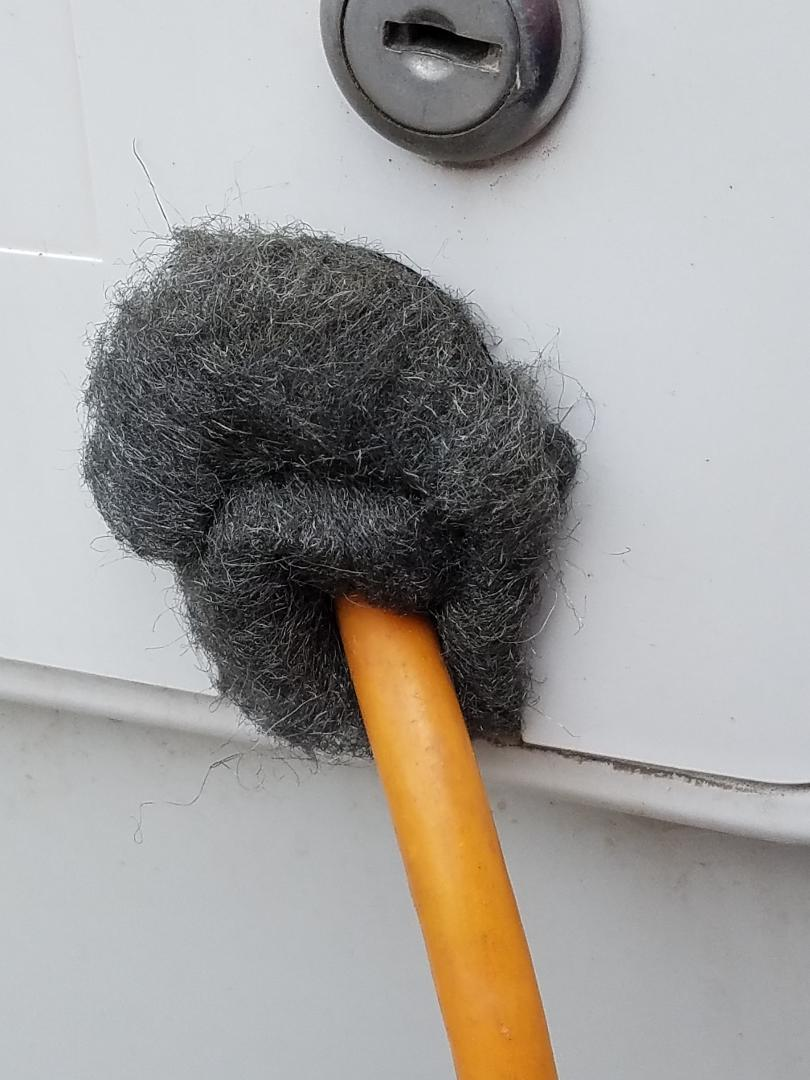 Steel wool around electricty cord at the hatch to keep mice from entering the van