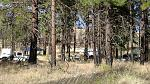 """Dispersed camping within 100' of a """"green dot"""" road almost anywhere in area.  Plenty of hunters camps on the flat hilltops of Colockum Rd, or a short..."""