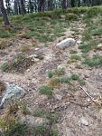 Section of original Nez Pierce trail