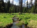 Slate Creek Meadows