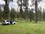 Midweek getaway.  Lovely free campsite, Cub Creek Road, Winthrop, WA.  1 mile from Buck Mountain MTB trailhead.