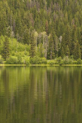 Reflections on Two Ocean Lake, Tetons
