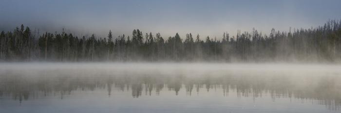 Foggy morning while kayaking on Little Redfish Lake near Stanley, ID