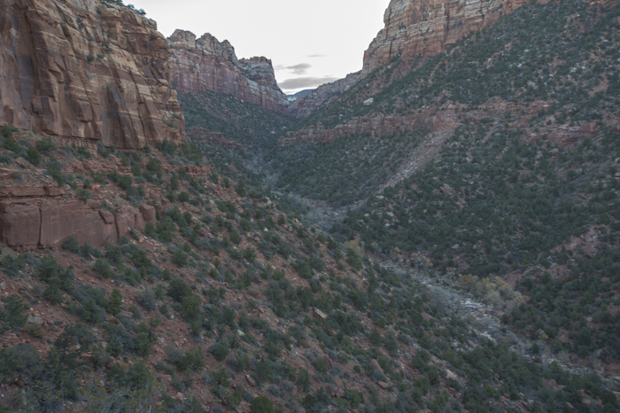 Looking down into the canyon and the Left Fork of North Creek on the hike to the Subway.