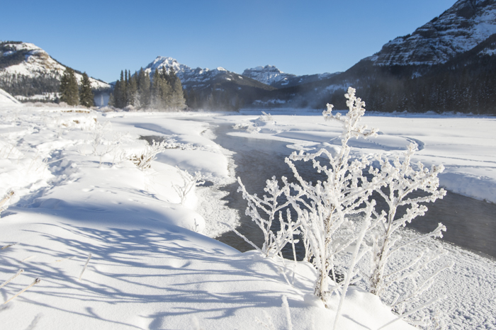 Soda Butte Creek and -24 Degrees in the Lamar Valley