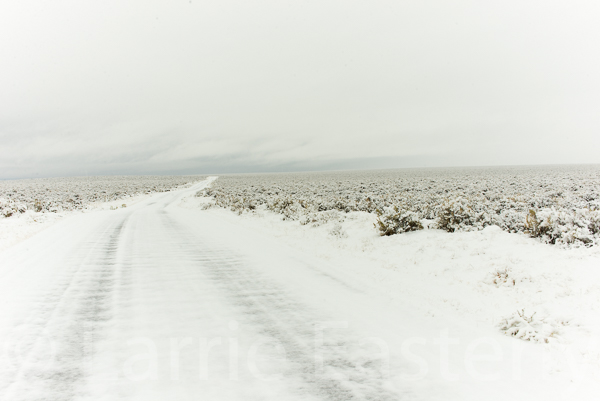 Snow on the gravel road.