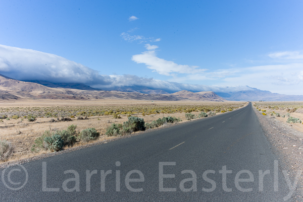Between the Steens and the Alvord Desert