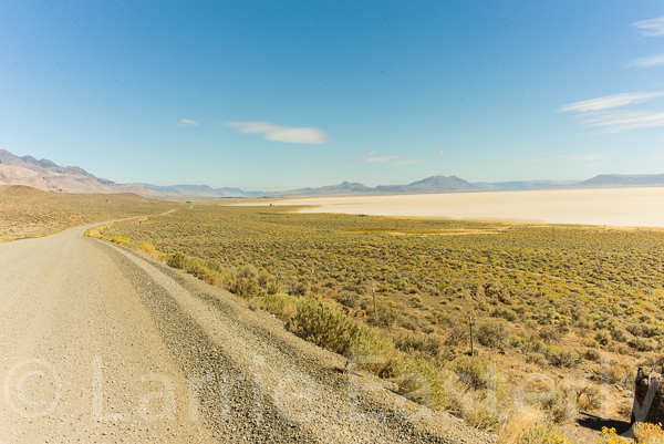Alvord Desert.