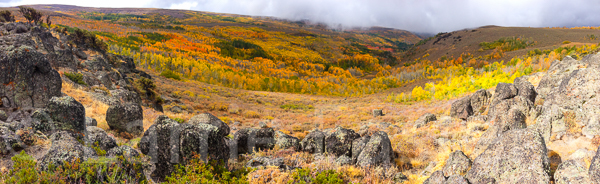 Steens Mountain color.
