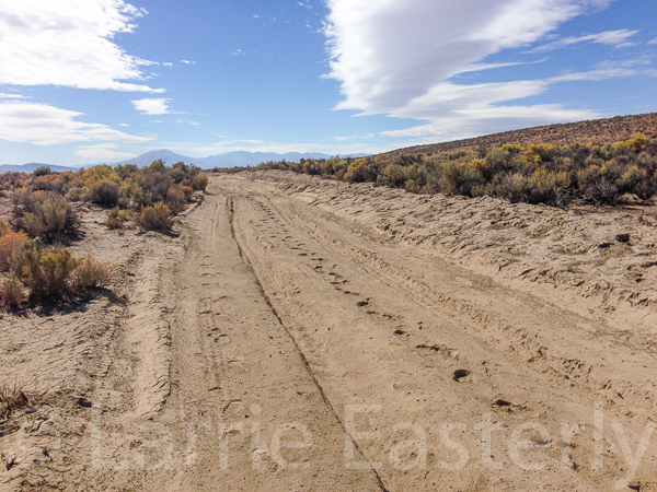 Six inches of dust in 12-inch deep ruts.