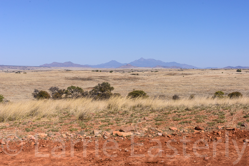 San Rafael Ranch