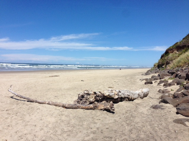 Looking north on the Oregon Coast at Tillicum USFS campground.
