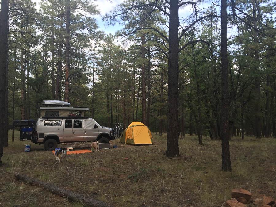Zuni Mtns FR 191 Camp