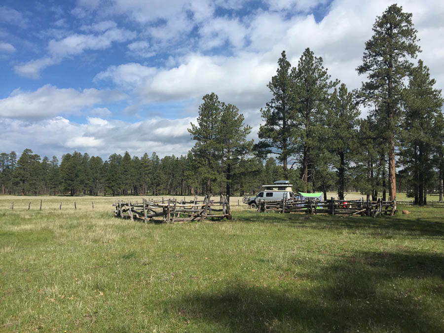 Los Burros Campground, AZ