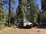 Sierra forest land