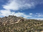 Can you find the Geologist 3  March 2017  Granite Mountains, Mohave National Preserve
