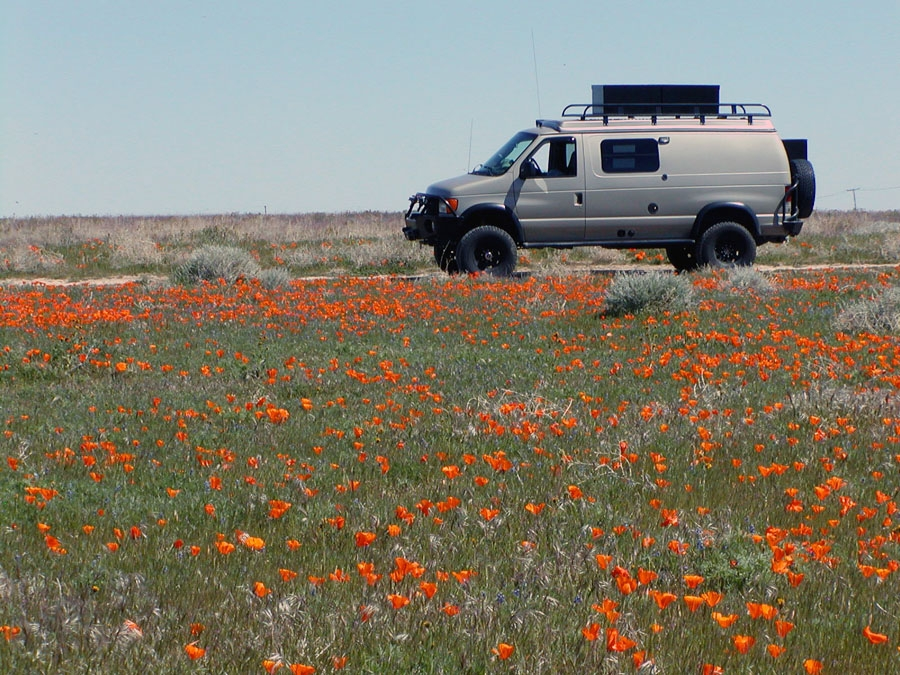 CJ - Antelope Valley California California Poppy Reserve